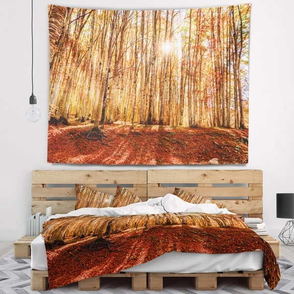 Designart 'Bright Sun over Thick Fall Forest' Modern Forest Wall Tapestry