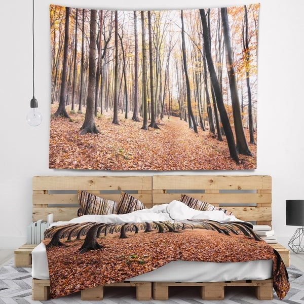 Designart 'Bright Fall Forest with Clear Sky' Modern Forest Wall Tapestry