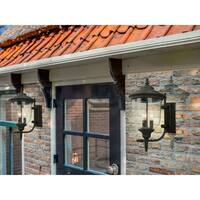Eglo Pinedale 17.5-inch Outdoor Wall Light with Matte Bronze Finish and Clear Seeded Glass
