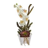 Phalaenopsis Orchid & Succulent Artificial Arrangement in Chair Planter - h: 20 in. w: 10 in. d: 8 in