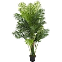 6' Hawaii Palm Artificial Tree - h: 6 ft. w: 14 in. d: 6.5 in