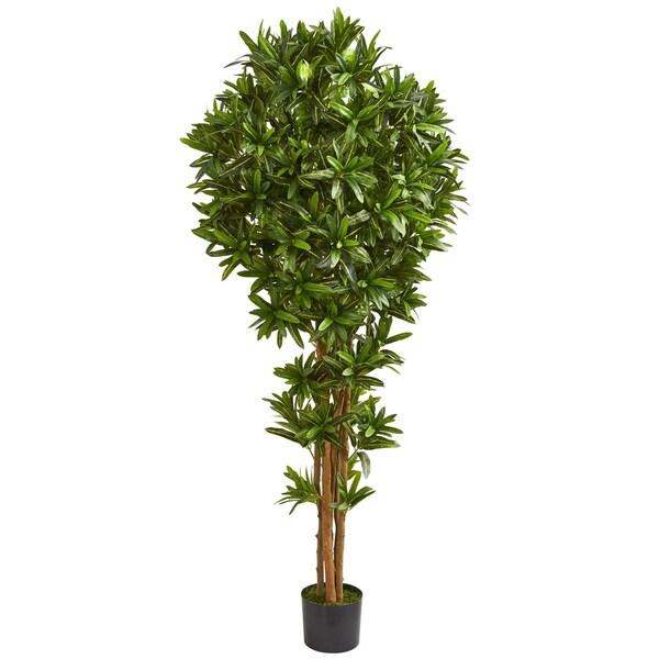 6' Dracaena Artificial Tree - h: 6 ft. w: 20 in. d: 20 in