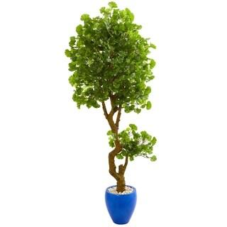 6' Jingo Artificial Tree in Blue Planter UV Resistant (Indoor/Outdoor) - h: 6 ft. w: 28 in. d: 24 in