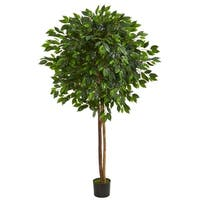6.5' Ficus Artificial Tree - h: 6.5 ft. w: 12 in. d: 12 in
