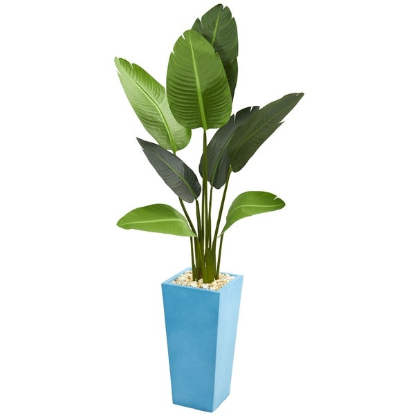 5' Travelers Artificial Palm Tree in Turquoise Planter - h: 5 ft. w: 24 in. d: 20 in