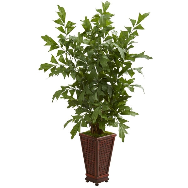 5' Fishtail Artificial Palm Tree in Decorative Planter - h: 5 ft. w: 43 in. d: 27 in