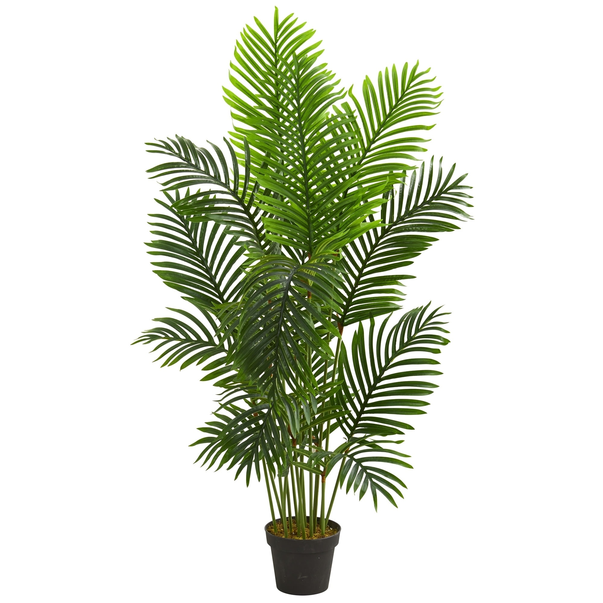 5ft Artificial Raphis Palm Tree on natural stem
