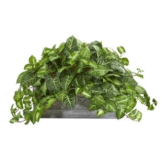 Nepthytis Artificial Plant in Stone Planter - h: 18 in. w: 38 in. d: 24 in
