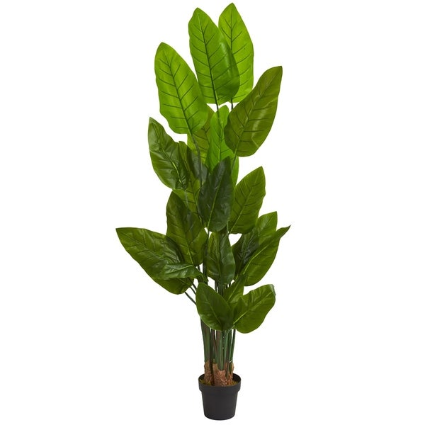 Shop 6 Canna Artificial Tree H 6 Ft W 12 In D 8 In Free