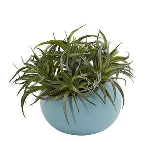 """9"""" Succulent Artificial Plant in Blue Planter - h: 9 in. w: 13 in. d: 12 in"""