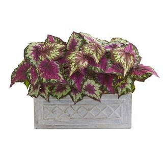 Nearly Natural Wax in Stone Planter 17-inch Begonia Artificial Plant