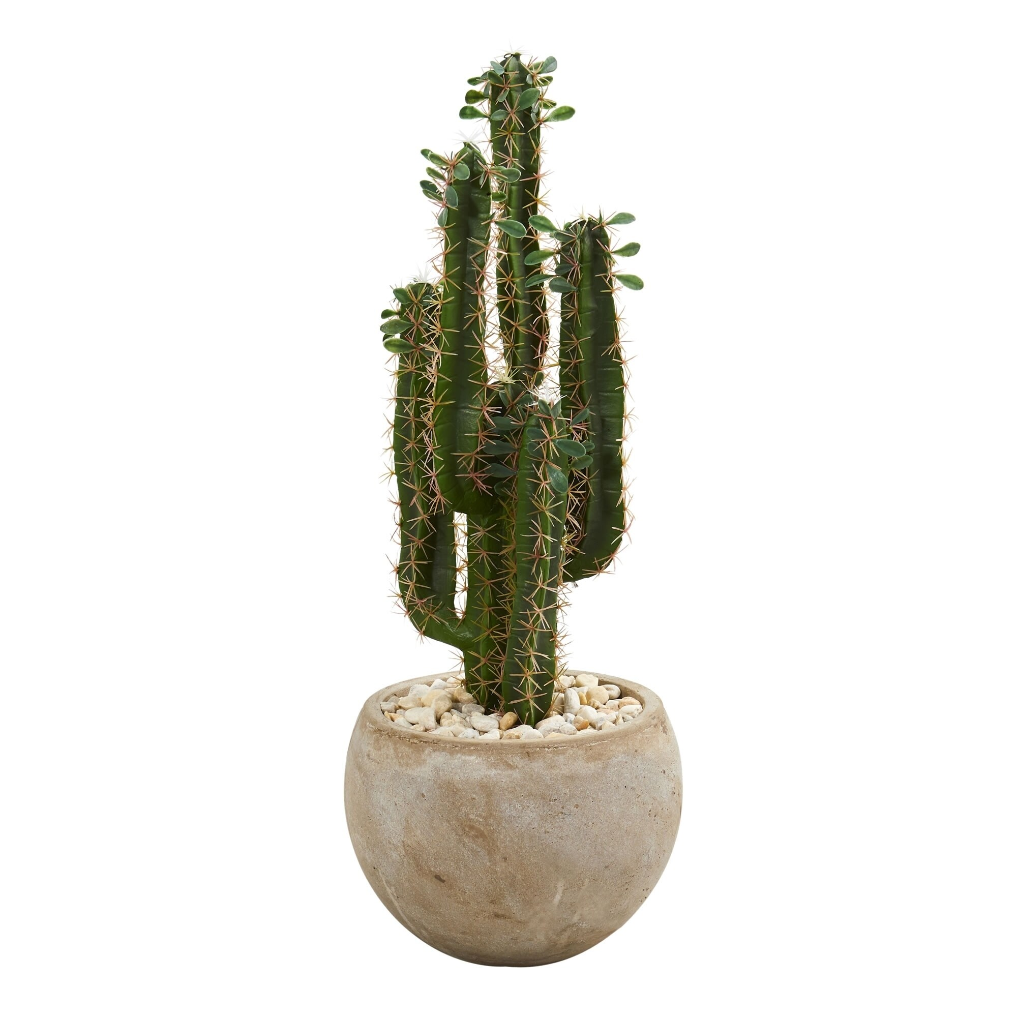 Shop For 2 5 Cactus Artificial Plant In Bowl Planter H 2 5 Ft W 10 In D 10 In Get Free Shipping On Everything At Overstock Your Online Home Decor Outlet Store Get 5 In Rewards With Club O 20942342