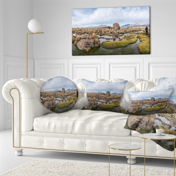 Designart 'Bolivia Volcanoes Panoramic View' Landscape Printed Throw Pillow
