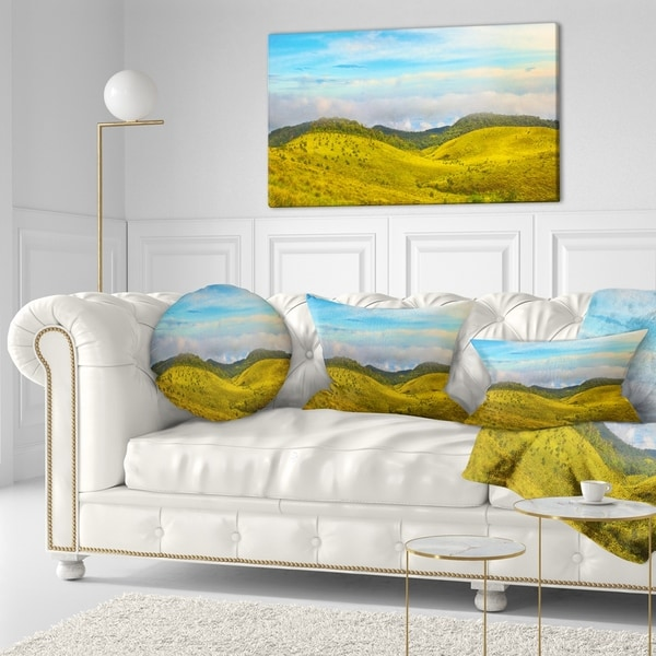 Designart 'discontinued product' Landscape Printed Throw Pillow