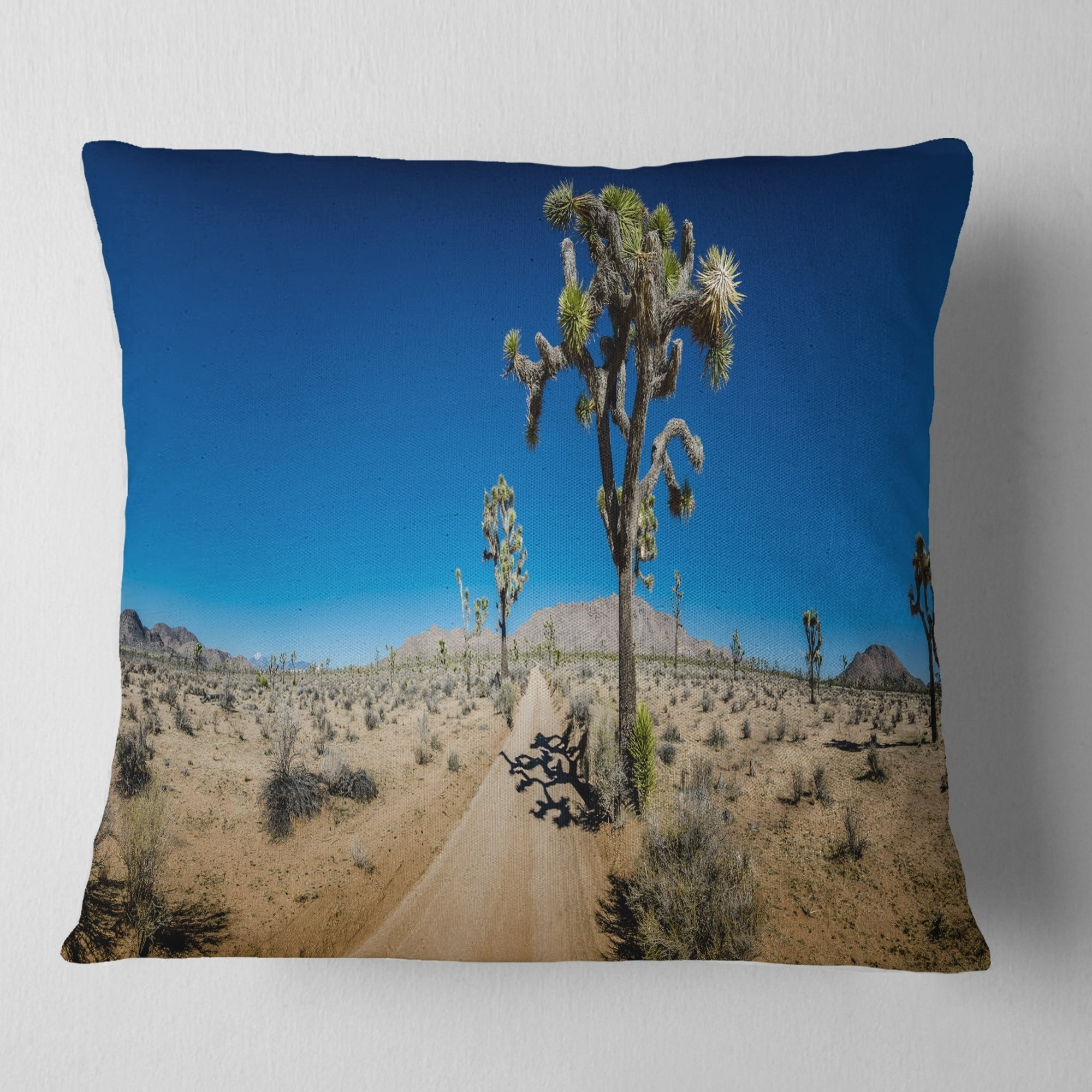 Designart Sandy Desert Road Panorama Landscape Wall Throw Pillow On Sale Overstock 20944731