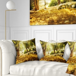 Designart 'Olive Trees' Photography Throw Pillow