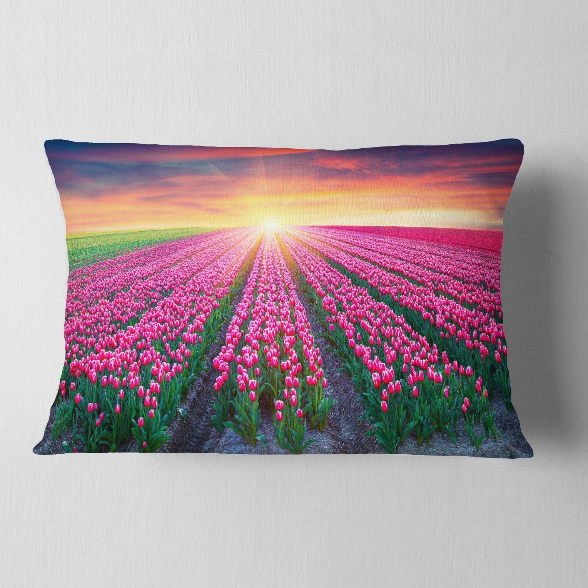 Designart Blooming Tulips At Sunrise Photography Throw Pillow Overstock 20948214