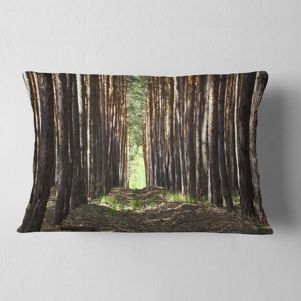 Designart Even Rows Of Pine Tree Forest Modern Forest Throw Pillow On Sale Overstock 20949848