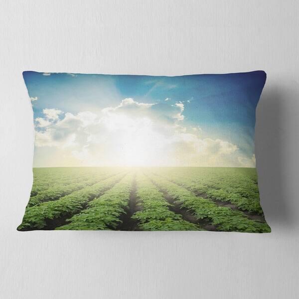 Designart Beautiful Potato Field At Sunset Landscape Printed Throw Pillow On Sale Overstock 20950263