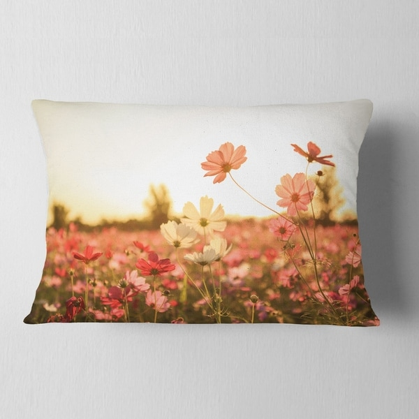 in x 18 in Sofa Throw Pillow 18 in Designart CU12984-18-18 Cosmos Flowers on Sunset Background Floral Cushion Cover for Living Room