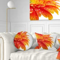 Designart 'Orange Gerbera with Raindrops' Floral Throw Pillow