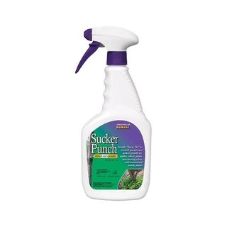 Bonide Sucker Punch Fungicide 16 oz. Liquid