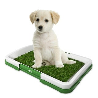 Artificial Grass Bathroom Mat- Portable Potty Trainer PETMAKER- Puppy Essentials, 18.5 x 13