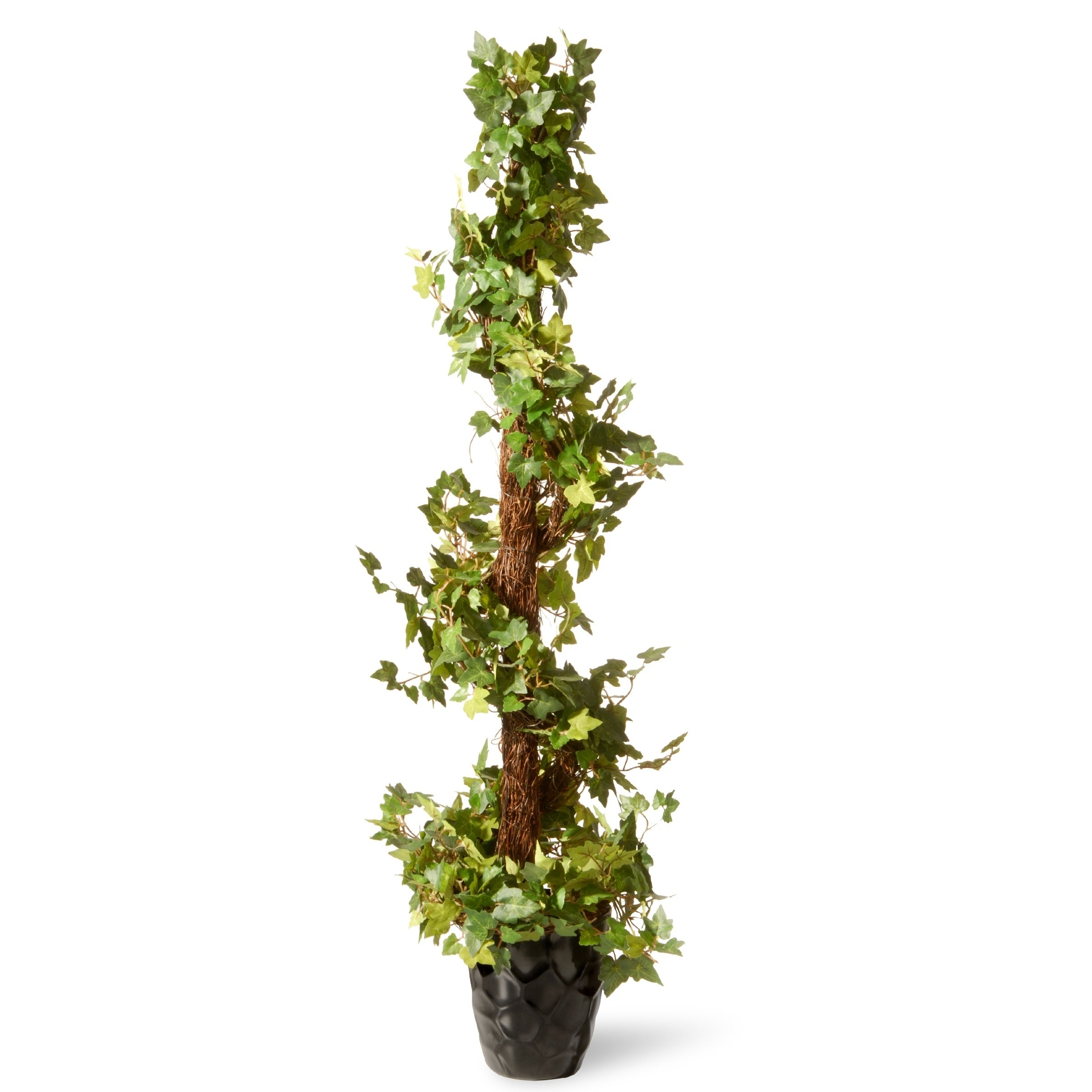 48 Ivy Spiral Topiary Overstock 20986805