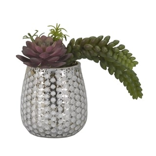 D&W Silks Red/ Green Echeveria and Donkey Tail in Silver/ White Glass Cup