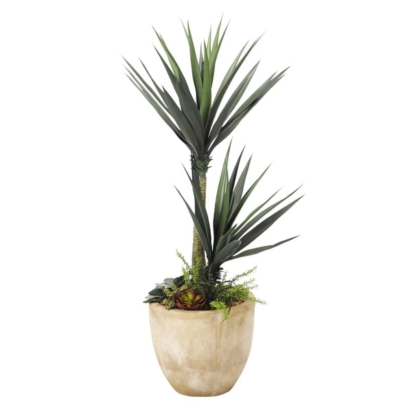 D&W Silks 6-feet Aloe Plant with Succulent Underplanting in Round Planter