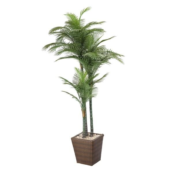 D&W Silks 7 Palm in Basket