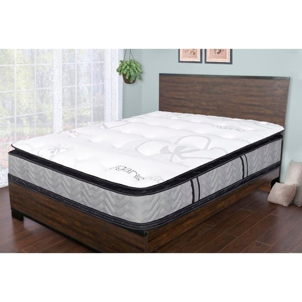 shop sleep therapy natural plush double sided pillow top mattress queen on sale free. Black Bedroom Furniture Sets. Home Design Ideas