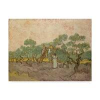 Vincent Van Gogh 'The Olive Pickers Saintremy' Canvas Art - Multi-color