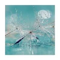 Incredi 'Catching Dreams' Canvas Art - Multi-color