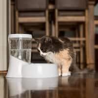 Petmate Fresh Flow Rain Battery Operated Water Fountain