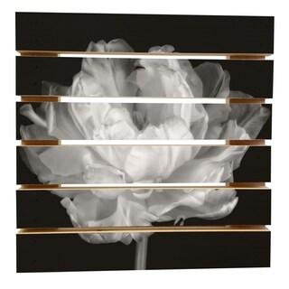 ArtWall Cora Niele 'Tulipa Double Black and White I' Wood Pallet Art