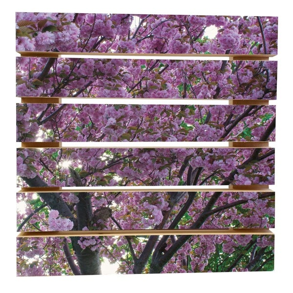 ArtWall Dan Wilson 'Spring Flowers' Wood Pallet Art
