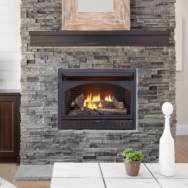 Shop Procom Fireplaces 29 In Ventless Dual Fuel Firebox Insert