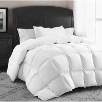 Swiss Comforts Down & Feather Comforter