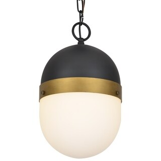 Crystorama Brian Patrick Flynn Capsule Collection 1-light Matte Black/Textured Gold Outdoor Pendant