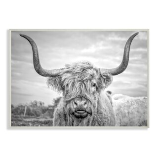 The Stupell Home Decor Collection Black and White Highland Cow Photograph Wall Plaque Art, 10 x 0.5 x 15, Made in USA