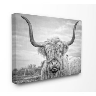 The Stupell Home Decor Collection Black and White Highland Cow Photograph Stretched Canvas Wall Art, 16 x 1.5 x 20, Made in USA