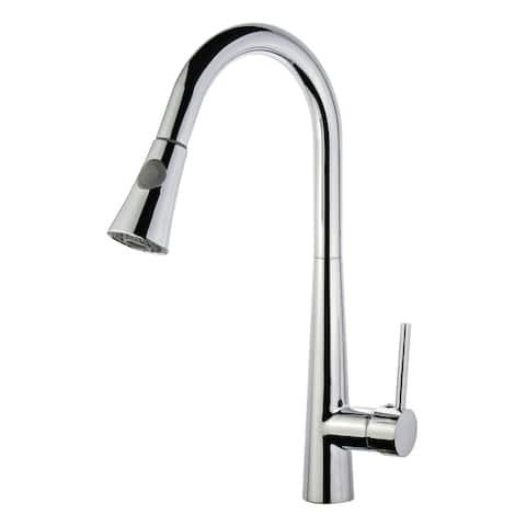 Legion Furniture Single Handle pull Down kitchen Faucet