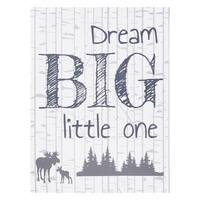 Dream Big Little One Canvas Wall Art