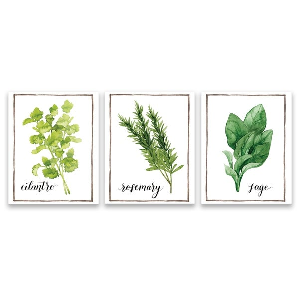 "DISCONTINUED ""Watercolor Herbs IV"" Printed Canvas - Set of 3, 8W x 10H x 1.25D each - Multi-color"