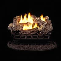 ProCom Ventless Natural Gas Log Set - 24in., 34,000 BTU, Manual Control, Model# WZN24HLA