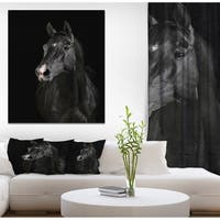 Designart 'Black horse in darkness' Animals photographyPrint on Wrapped Canvas
