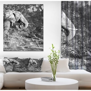 Designart 'Black and white elephant' Africa Animals Painting Print on Wrapped Canvas