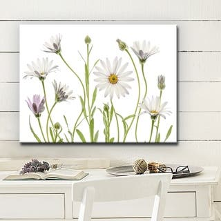 Cape Daisies' Floral Wrapped Canvas Wall Art