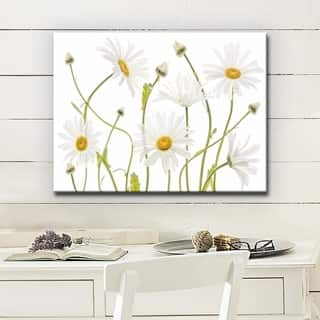 Ox Eye Daisies' Floral Wrapped Canvas Wall Art